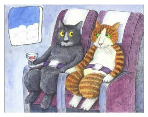 393557801 Viajando com seu gato p  o exterior